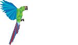 ara-logo-color-text-white-100h