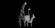 logos-idea-wild